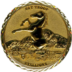 military-3D-challenge-coin